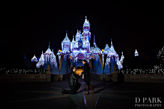 Disneyland Proposal Photos