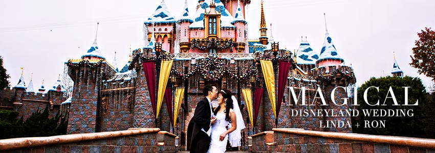 Disney Wedding Photographer Christmas