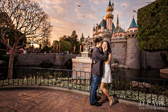 Disneyland Castle Engagement