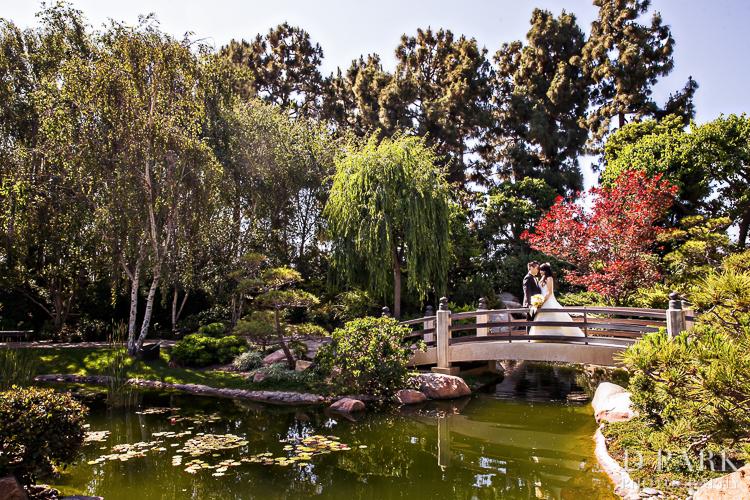 earl-burns-miller-japanese-garden-wedding-photographer