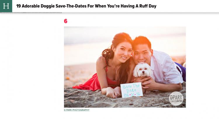 best dog engagement photos