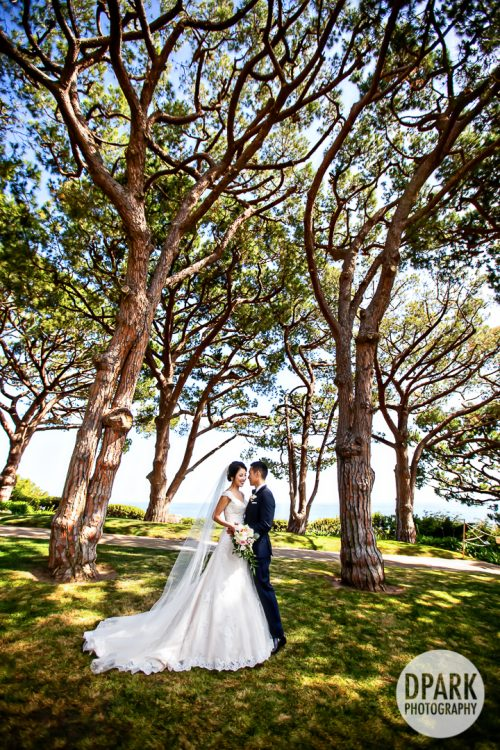 rancho-palos-verdes-korean-wedding-photography