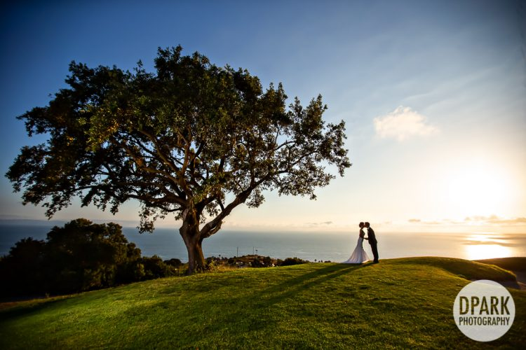 palos-verdes-korean-wedding-photographer
