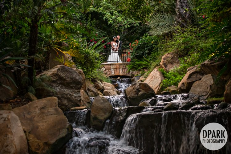 temecula-fallbrook-luxury-destination-wedding-cinematography